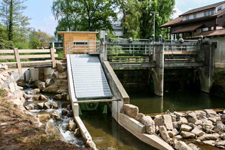 Naturnahe Fischtreppe